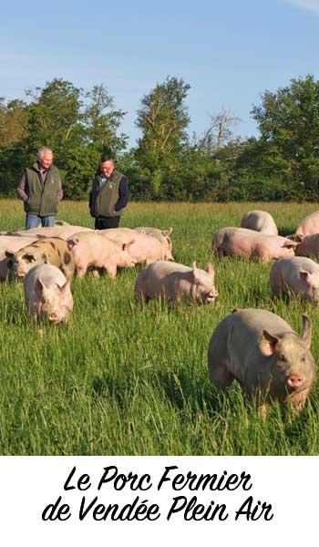 Porc fermier de Vendée plein air